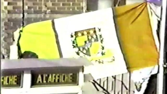 La Ville de Saint-Joseph-de-Beauce s'est dotée d'un drapeau distinctif en 1984.