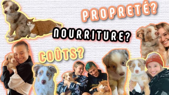 Claudie Mercier - Avoir un chien